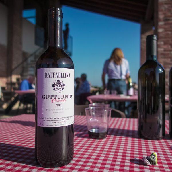 Degustazione in Vigna nei Colli Piacentini Ottobre 2019